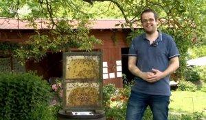 O včelkách od A do Z